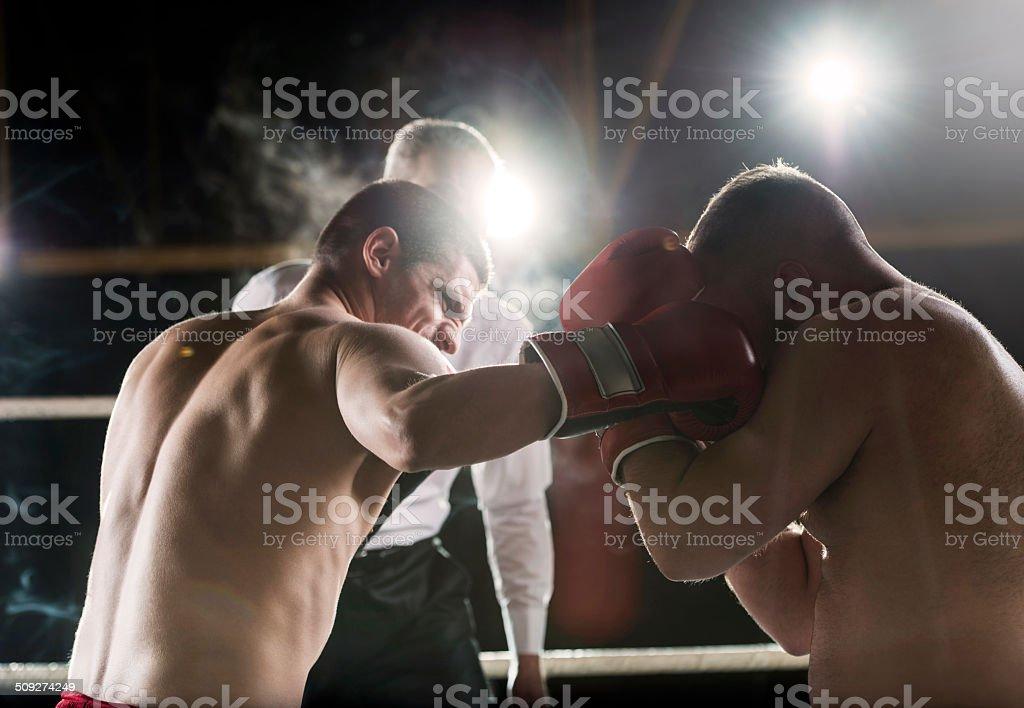 Boxing! stock photo