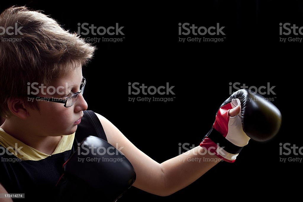 Boxing Position royalty-free stock photo