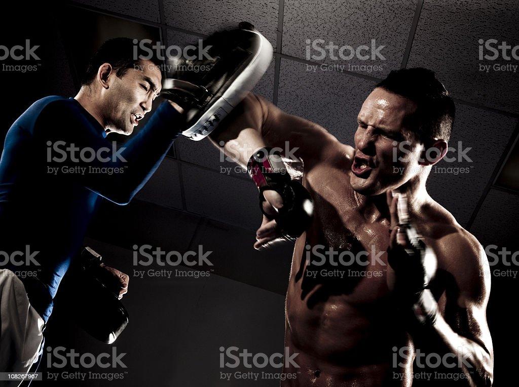 Boxing Sport Training royalty-free stock photo