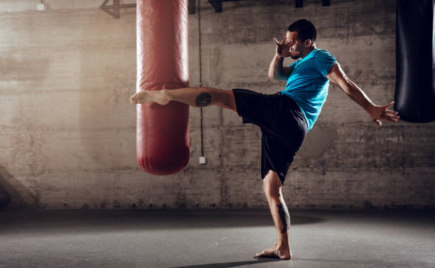 Boxing Workout stock photo