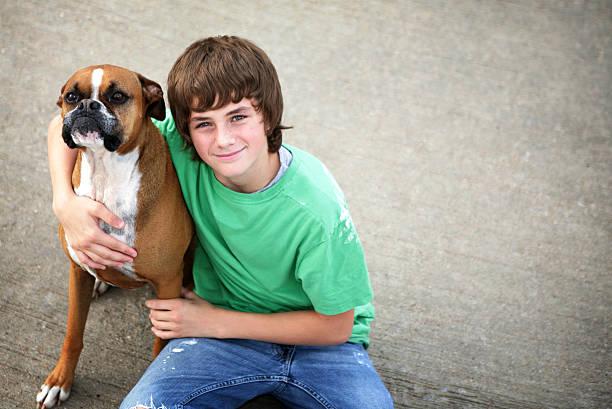 chłopiec i pies boksera - bokser pies zdjęcia i obrazy z banku zdjęć