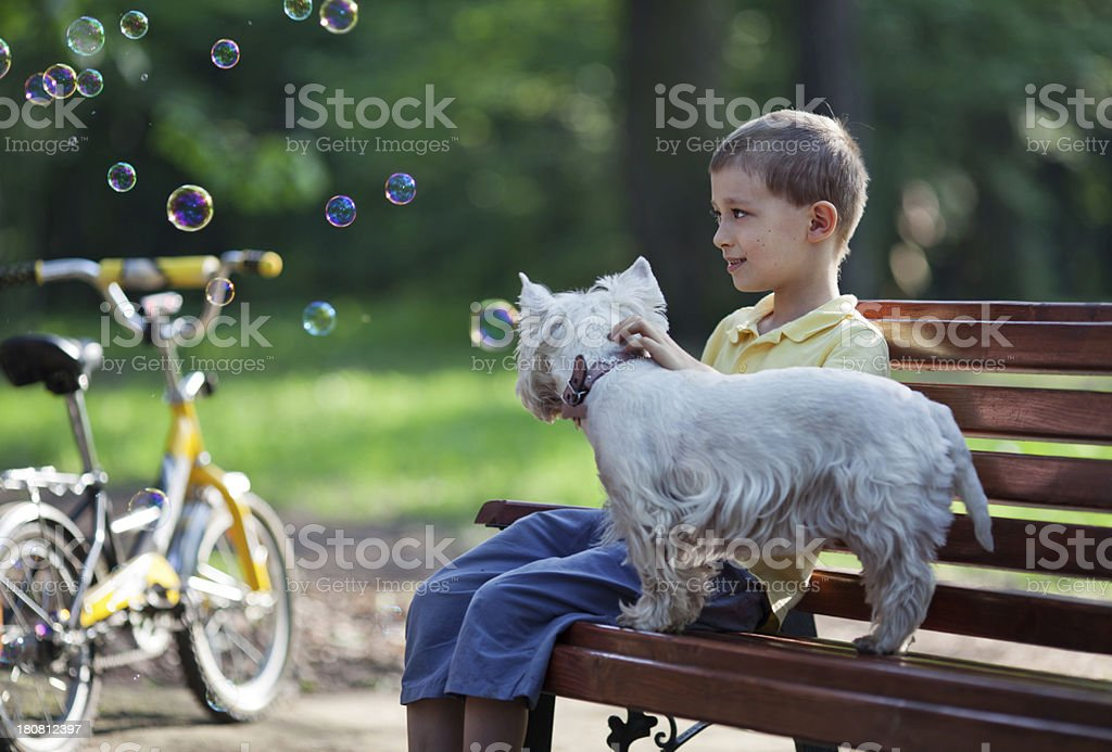 Boy and dog in summer park royalty-free stock photo