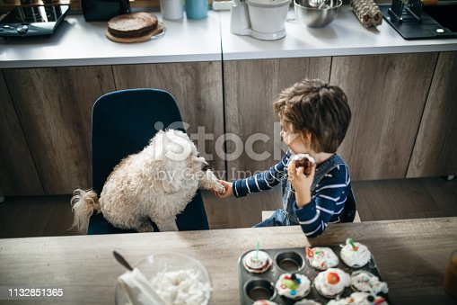 Young boy eating muffins in the kitchen with his dog observing him waiting for a bite