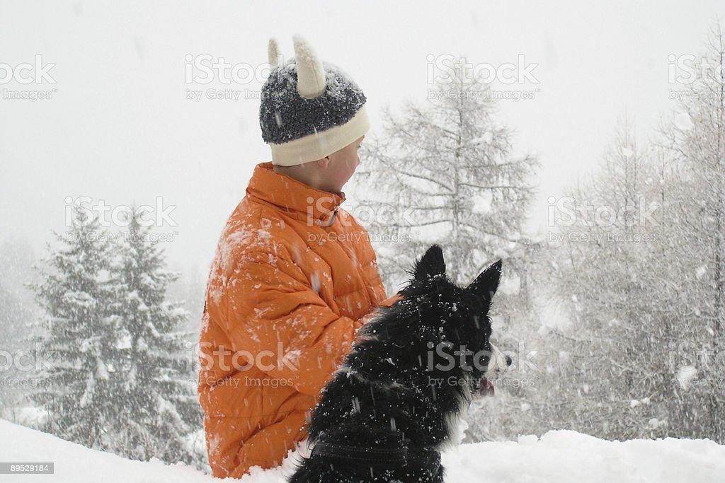 Мальчик и Собака в снегу Стоковые фото Стоковая фотография