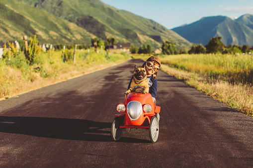Boy and Dog in Toy Racing Car
