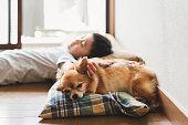 家でリラックスした少年と犬