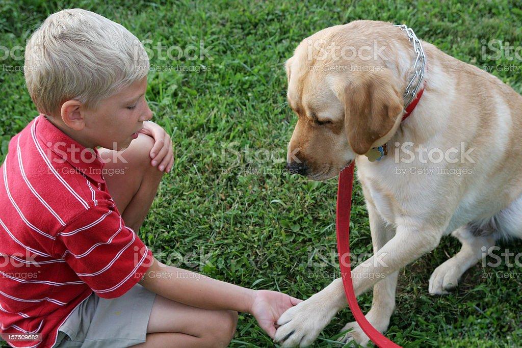 boy and dog shake royalty-free stock photo