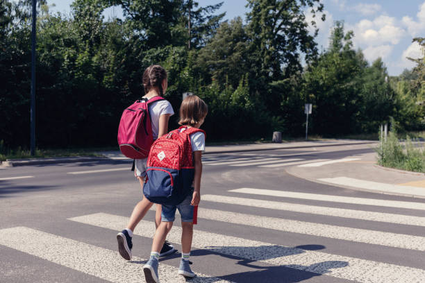 Boy and girl with backpacks walking on pedestrian crossing to the school stock photo
