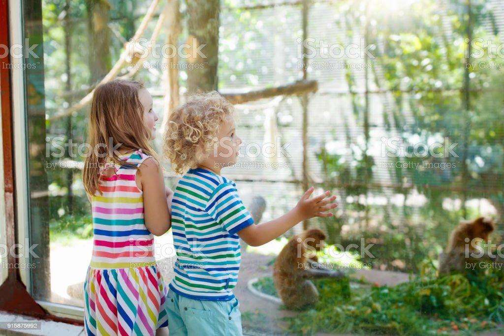 Niño y niña con mono en el zoológico. Los niños y animales. - foto de stock