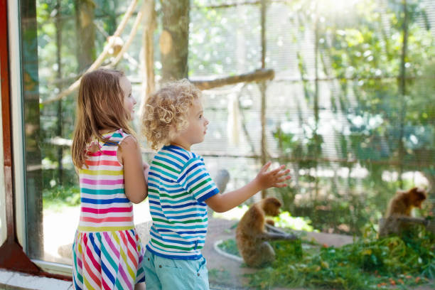 Boy and girl with monkey at zoo. Kids and animals. stock photo