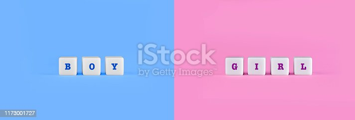 Boy and Girl Words on white blocks, with traditional pink and blue colors representing baby boy and baby girl. Copy space on blank color background, words, text.