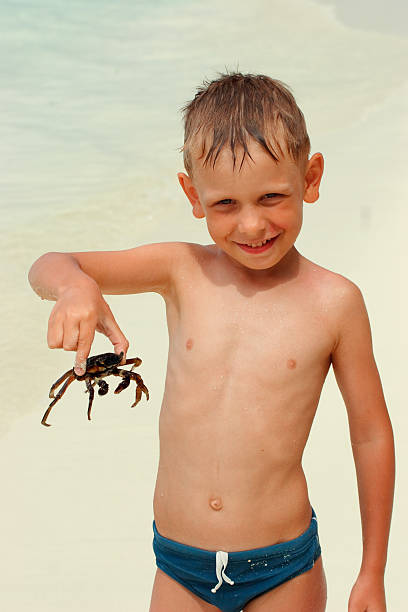 Boy and his crab stock photo