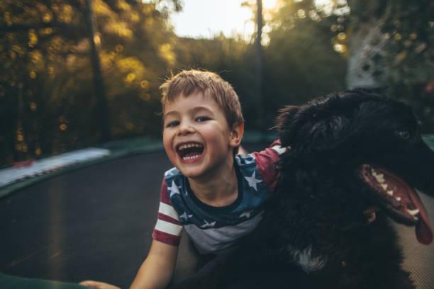 Boy and his dog on a trampoline picture id864964478?b=1&k=6&m=864964478&s=612x612&w=0&h=tsmaaefjbwxfiwjqxjnffyqvgz3avl1vjto7cz2uuw4=