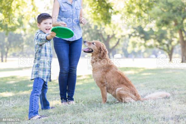 Boy and his dog play in the park together picture id841934774?b=1&k=6&m=841934774&s=612x612&h=qg dyen0xfuz rcvcrqf1rlz6bfhadgu415f 3uo2cu=