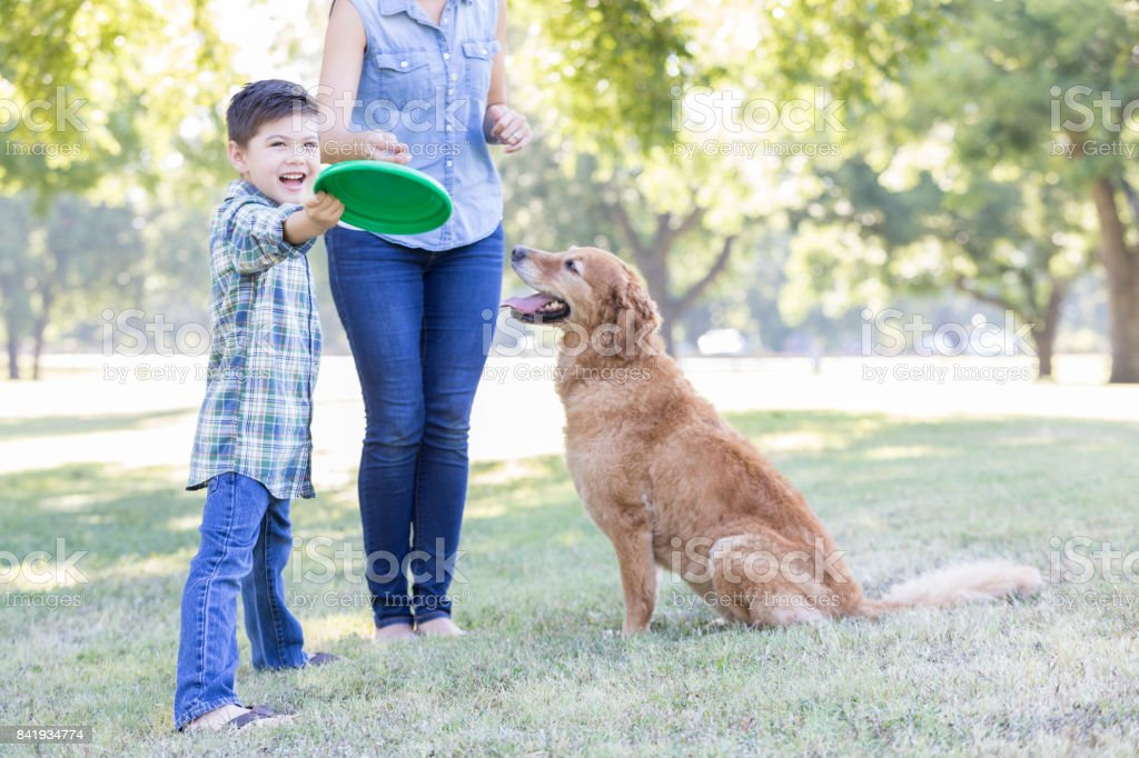 A boy and his dog play in the park together stock photo