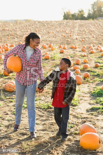 81711567 istock photo A boy and his grandmother in a field of pumpkins 81710830