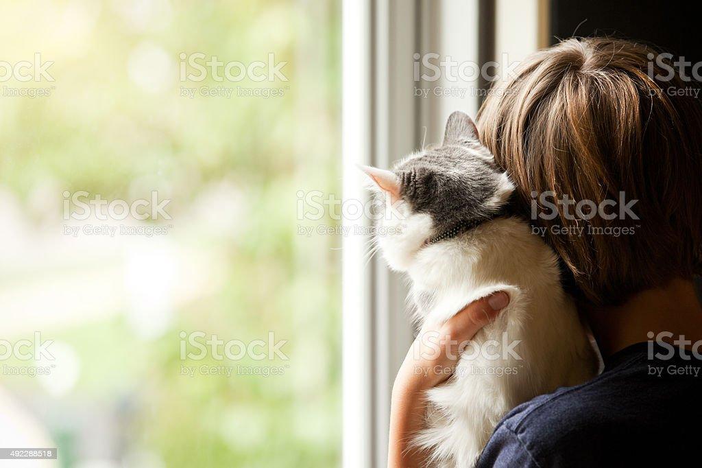 Junge und seine Kätzchen, die durch Fenster – Foto