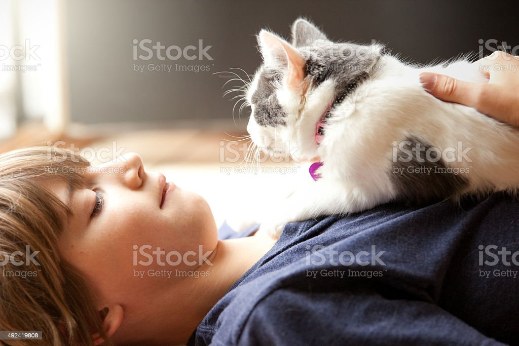 Junge und seine Kätzchen – Foto
