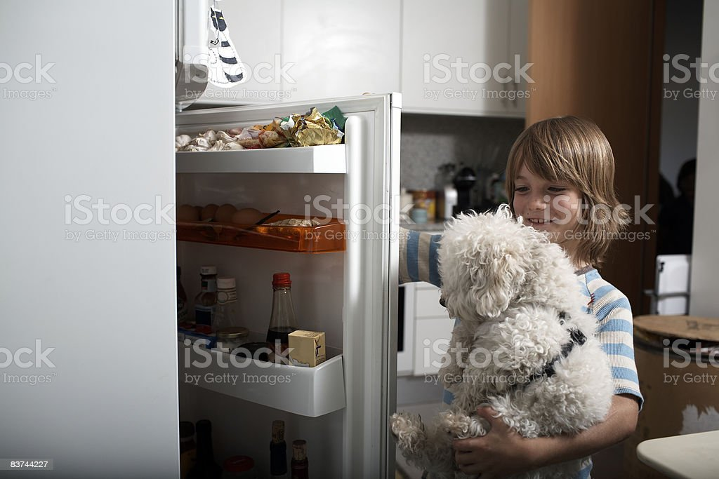 boy and pet dog look in refrigerator royalty-free stock photo