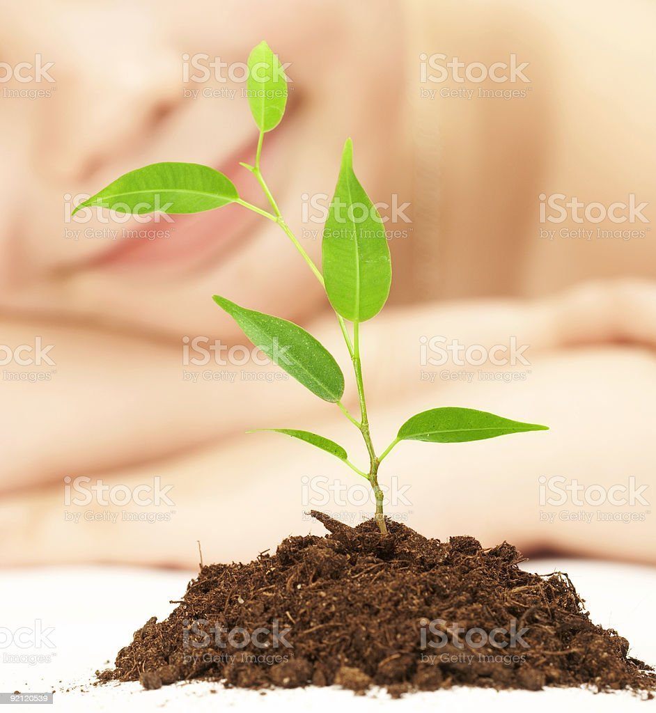 boy and plant. royalty-free stock photo