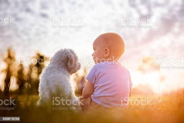 Boy and puppy picture id539819256?b=1&k=6&m=539819256&s=612x612&h=uihbmjqtamozqm4jskfdwtod4pbcrhtbryehho tpq4=