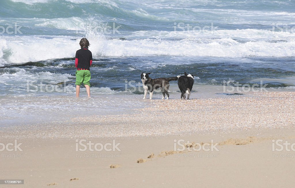 Boy at a Mediterranean Israel beach with dogs royalty-free stock photo