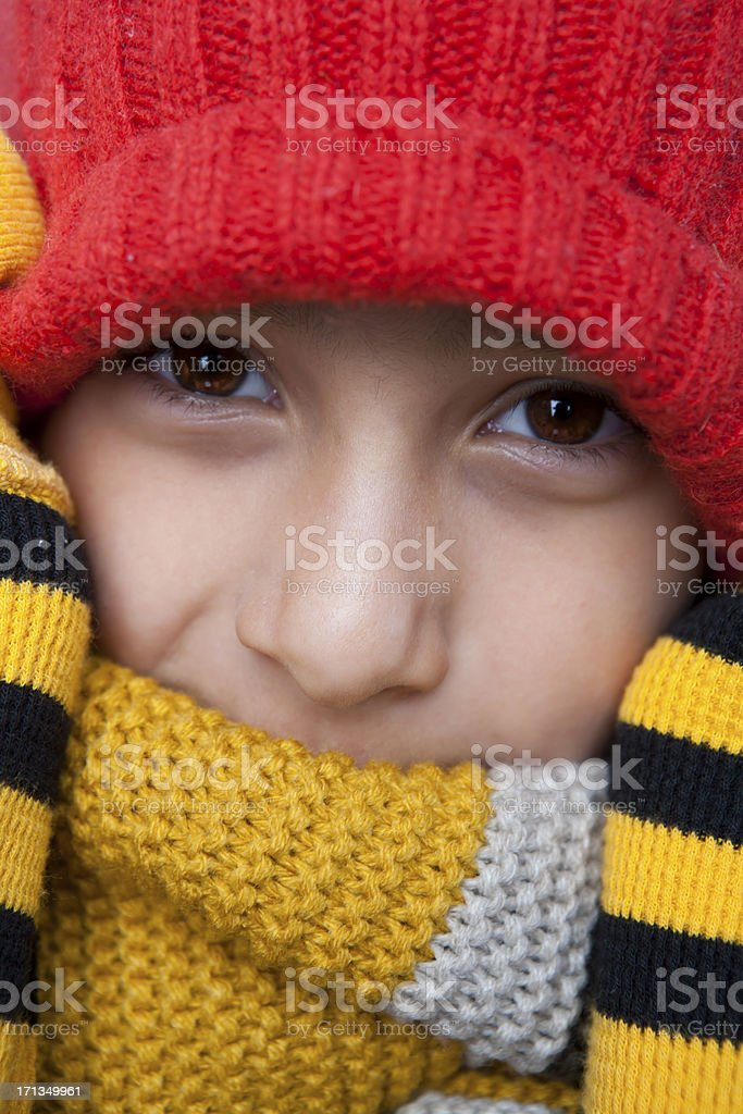 Boy autumn portrait royalty-free stock photo