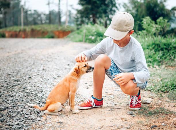 Boy caresses little homeless puppy picture id926441200?b=1&k=6&m=926441200&s=612x612&w=0&h=uzdn6dtbfky0rw omwtnpda6hbq  x6ytokolj7vjpe=