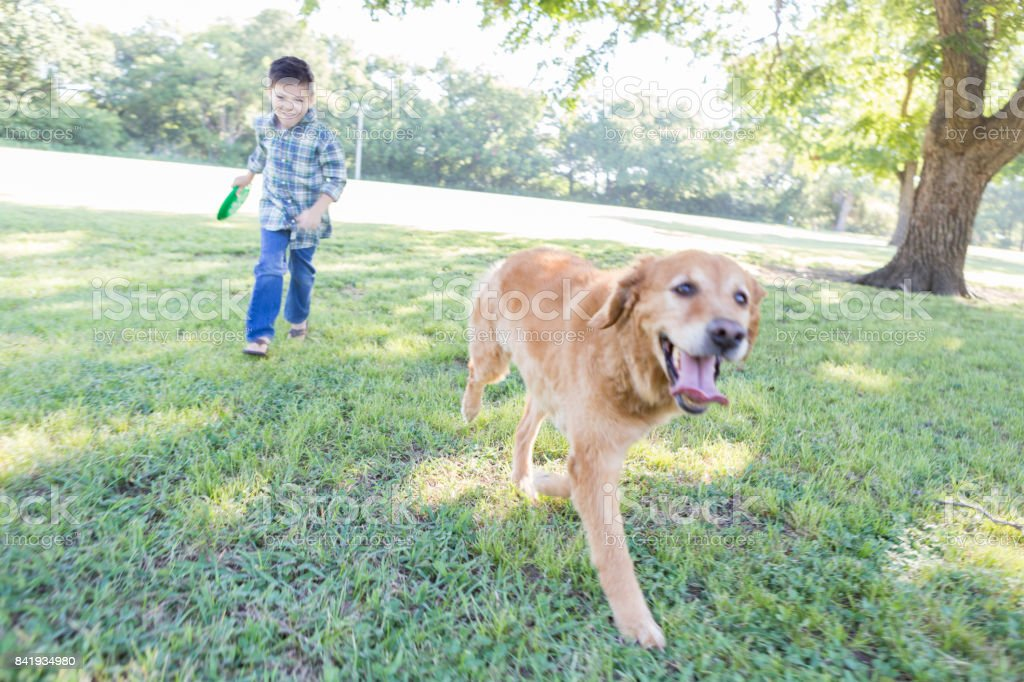 Boy chases dog while playing in the park stock photo