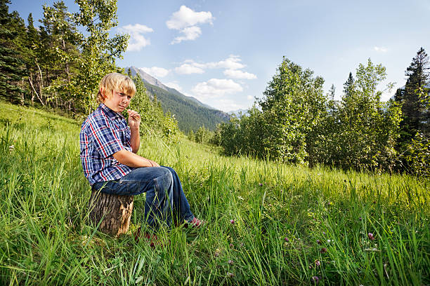 Boy chewing grass stock photo