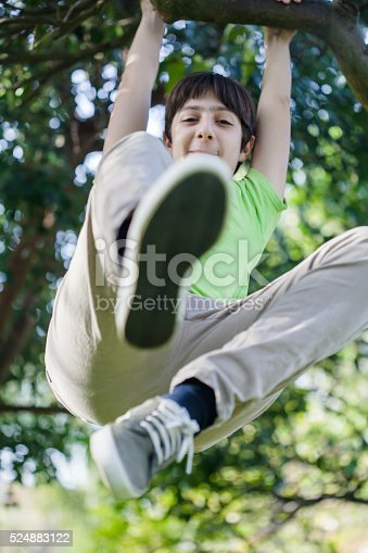 istock Boy climbing a tree 524883122