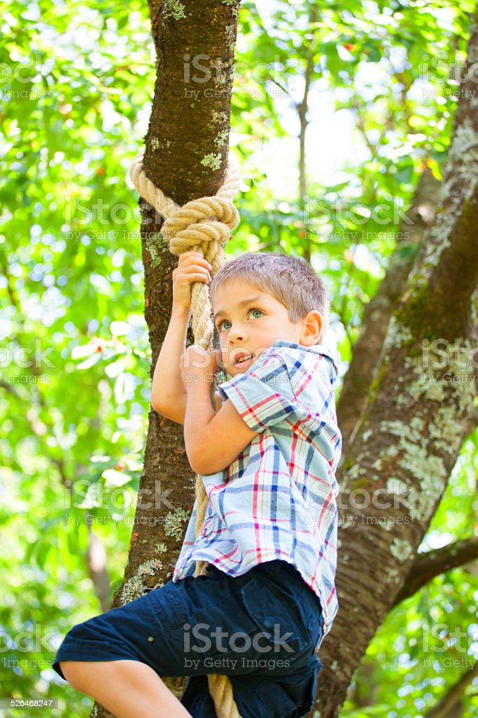 Boy climbing up a rope stock photo