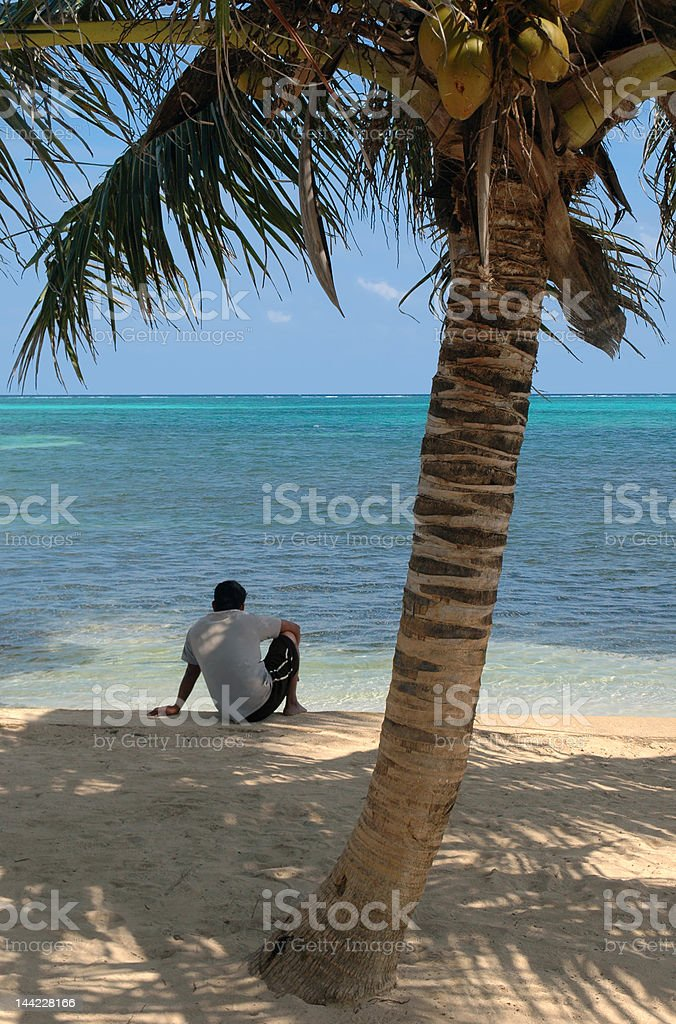 Boy, Coconut Palm, and the Beach stock photo