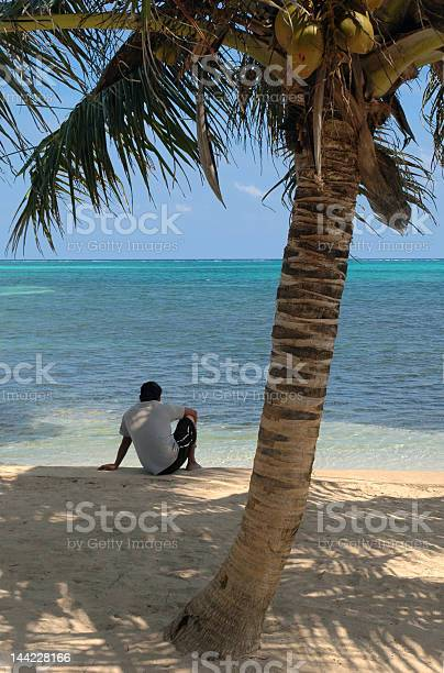 Photo of Boy, Coconut Palm, and the Beach