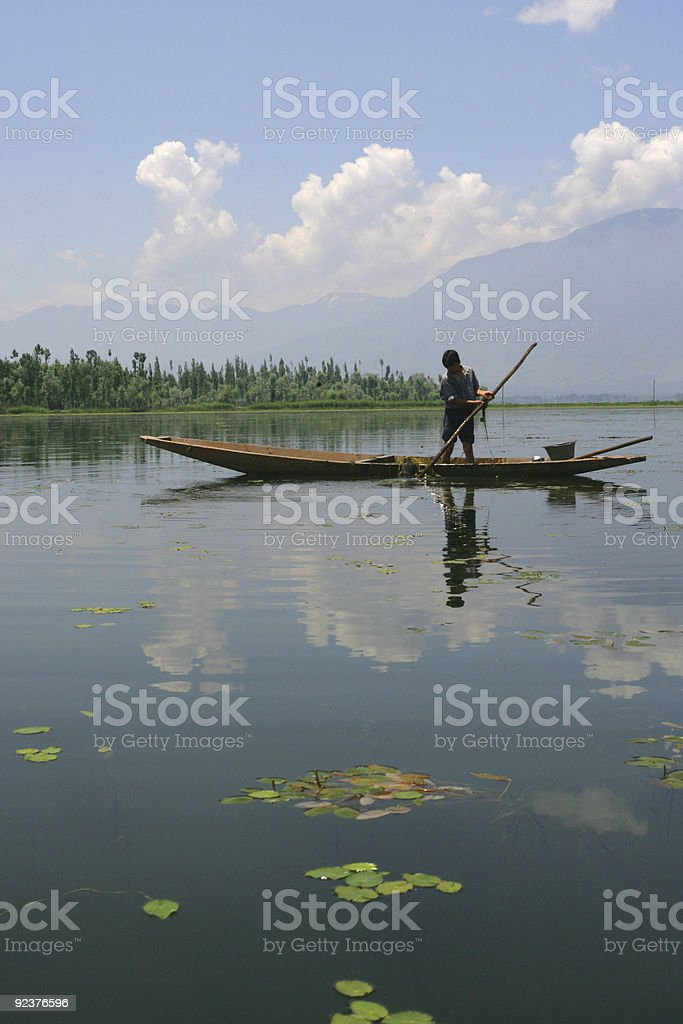 boy collecting lake grass royalty-free stock photo