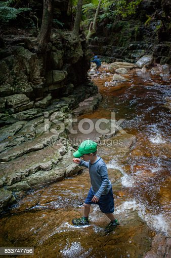 istock Boy crossing canyon flowing water 833747756