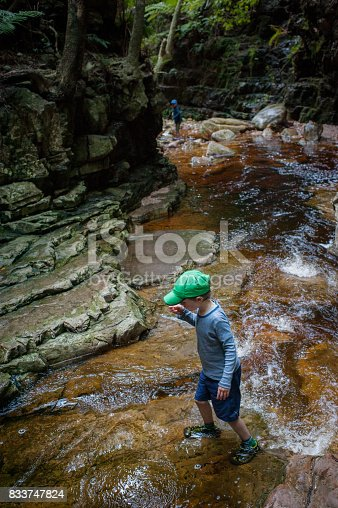 istock Boy crossing canyon stream 833747824