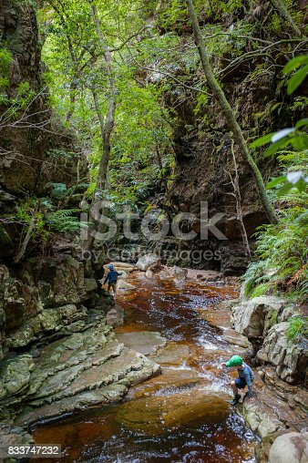 istock Boy crossing canyon stream wide 833747232