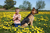 Little boy sitting with his dog on the meadow back to camera