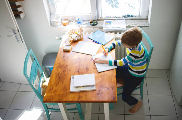 Boy doing homework, learning at home stock photo