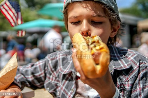 534317162 istock photo Boy eating barbecue grilled hot dog on family picnic 1173605712
