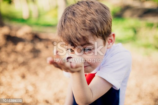 A boy examines a worm he is holding in the palm of his hand after discovering it in the park.
