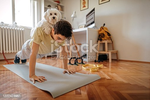istock Boy exercising with his pet Maltese dog at home 1222423951