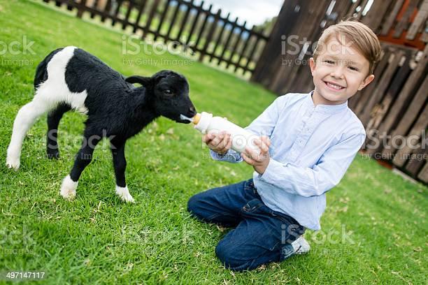 Boy feeding a goat picture id497147117?b=1&k=6&m=497147117&s=612x612&h=j54l6tqeyifmqla06tzohxnaleq6qgs6mav8rmeebsk=