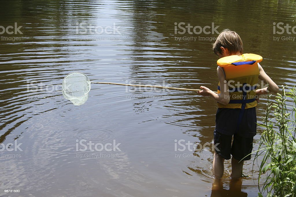 Boy fishing with net royalty-free stock photo