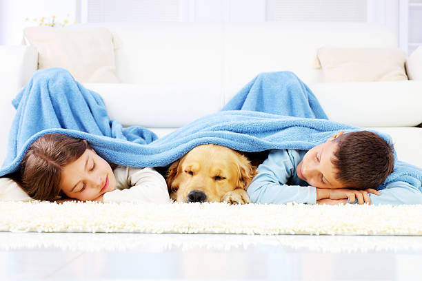 Boy, girl and dog sleeping covered with a blanket. stock photo