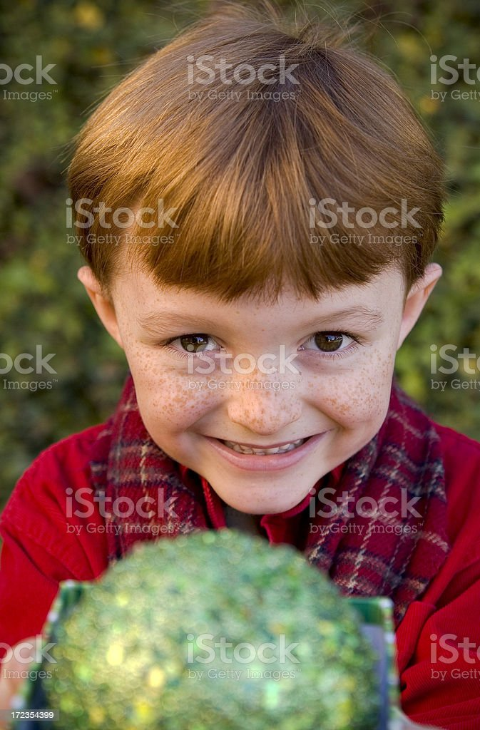 Boy Giving Christmas Present royalty-free stock photo