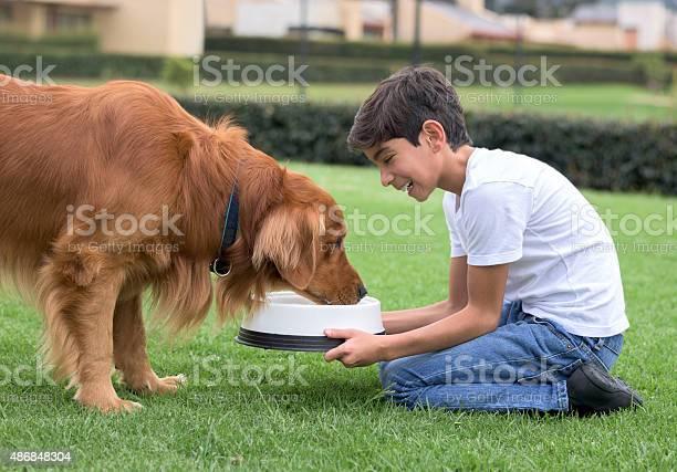 Boy giving water to his dog picture id486848304?b=1&k=6&m=486848304&s=612x612&h=amveangpfjltpgwmzzqqy 0un9l4qivplmahezczgfs=