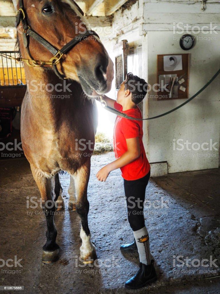 Boy grooming his beloved horse. stock photo
