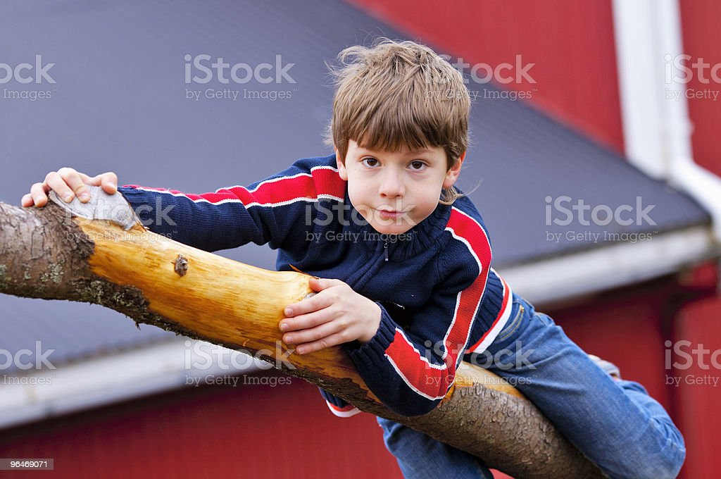 Boy hang from a bough royalty-free stock photo